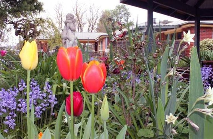 Bindaree Garden